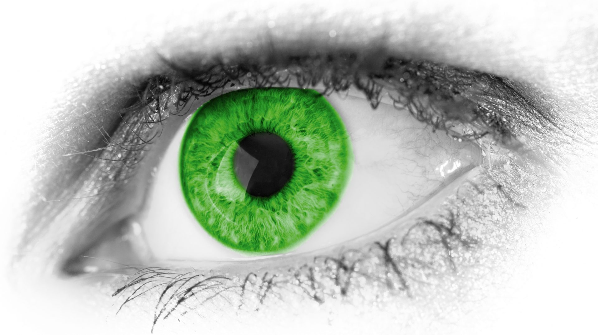 cropped-green_eye_detail_198802-1.jpg